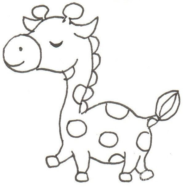 卡通长颈鹿简笔画步骤_长颈鹿简笔画图片