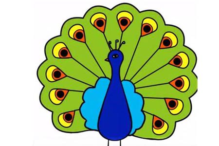 幼儿园彩色孔雀简笔画步骤图片